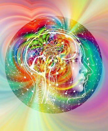 connectie tussen de darmen, het brein en mentale gezondheid