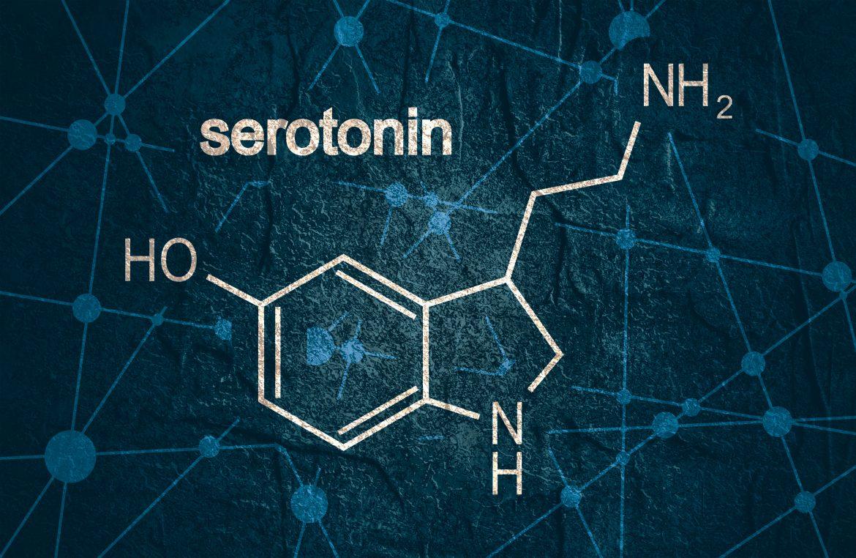Serotonine tekort: wat we wel en niet weten