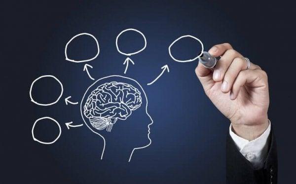 13 psychologische feitjes die jij nog niet wist